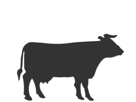 Boeuf & Veau - Une belle sélection de boeuf et de veau de qualité exceptionnelle.