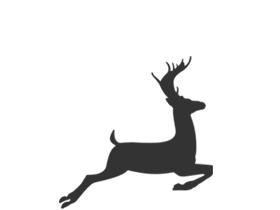 Wild - Alle soorten, herkomsten en versnijdingen, ONZE SPECIALITEIT!