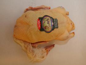 """Canette fermier """"Les Amis"""" - Cet oiseau venant de Challans dotée d'une viande rouge est disponible en plusieurs race, la race barbarie est la  plus courante et la plus reconnue parce que notamment elle est la moins grasse."""