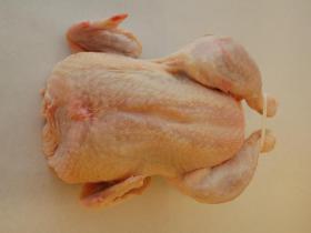 Poule mère